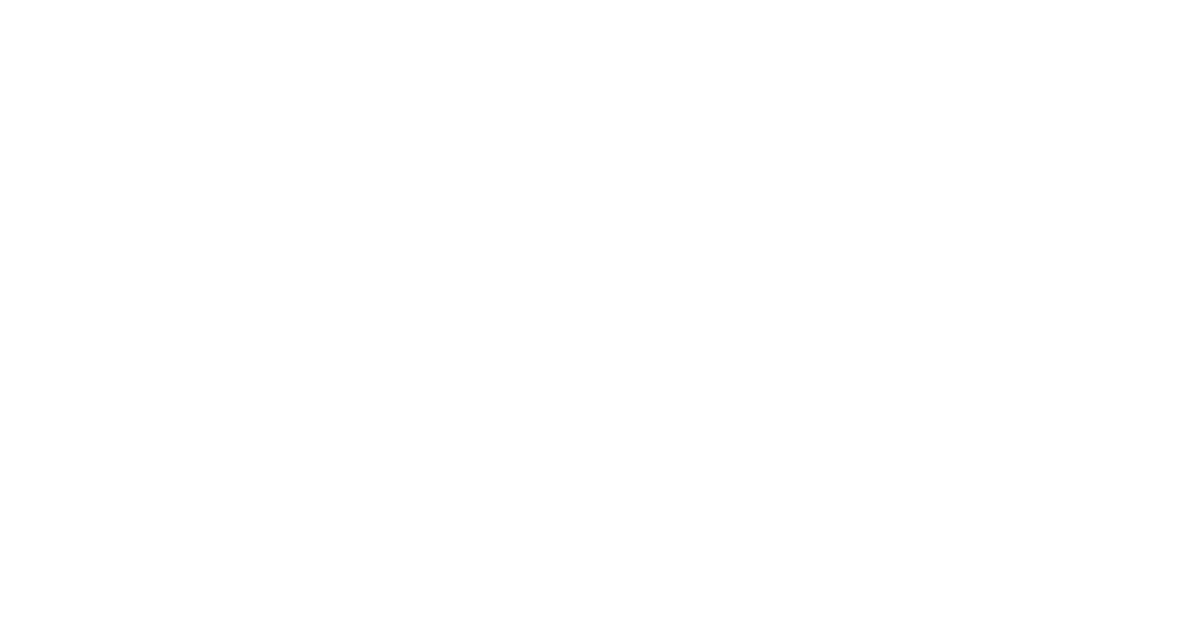 SILVIA BARCA